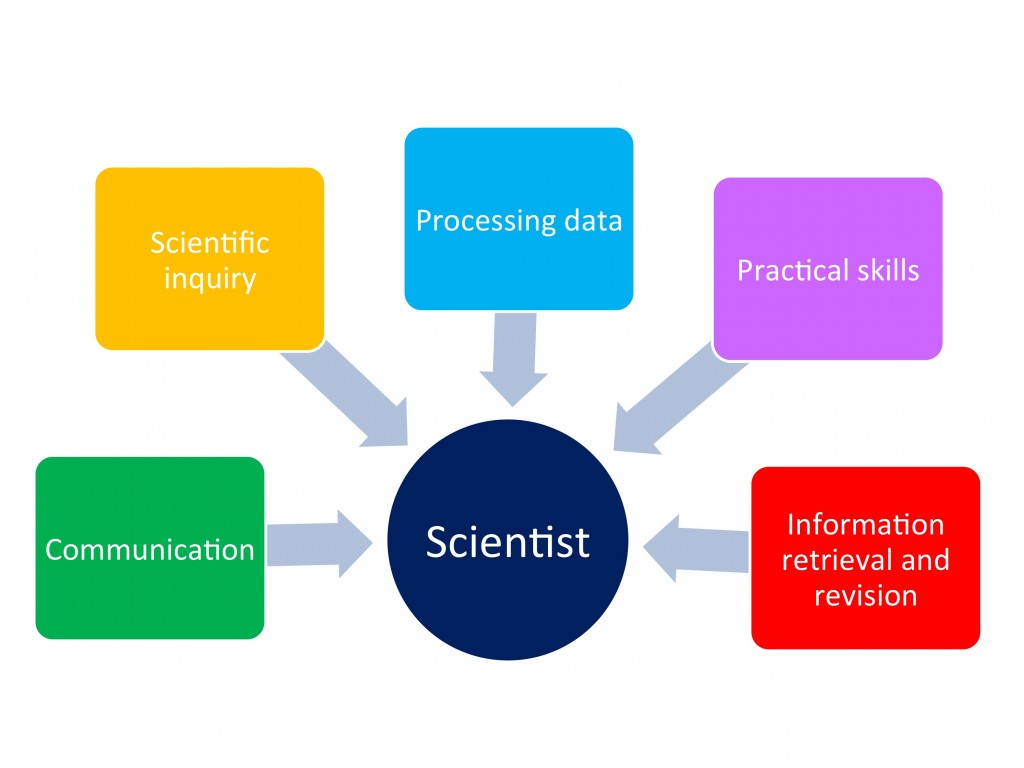 What skills does a scientist need?